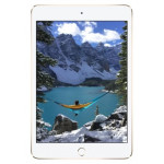 Apple iPad Mini 4 16GB Wi-Fi + 4G LTE – Gold